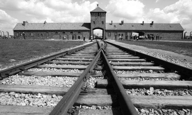 Proiectul de lege privind Holocaustul, votat favorabil în senatul Poloniei