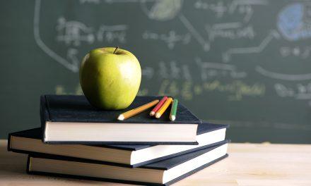 Elevii români ar putea învăța după aceleași manuale. Proiectul, aprobat în Camera Deputaților