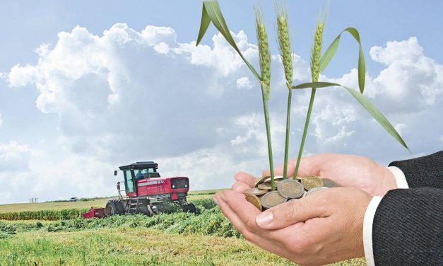 APIA oferă fermierilor posibilitatea de creditare în baza subvențiilor agricole