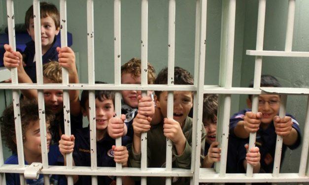 Legea care majora alocațiile copiilor, respinsă de Senat. În schimb, pușcăriașii ar putea primi lunar 150 euro