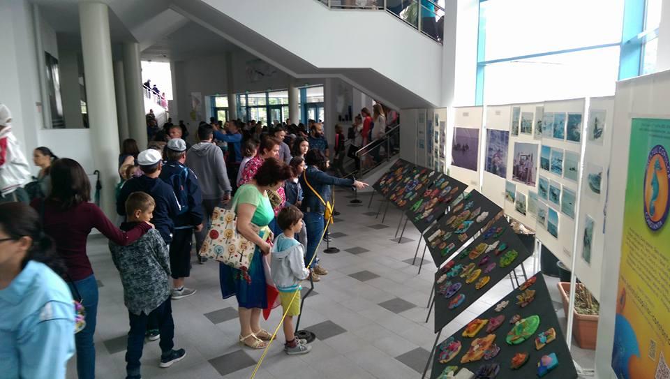 Operele micilor artiști ai Cercului de ceramică, expuse pe holurile Delfinariului Constanța