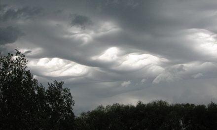 Alertă meteo: ANM anunţă ploi, vânt şi ninsori, în Dobrogea și restul țării