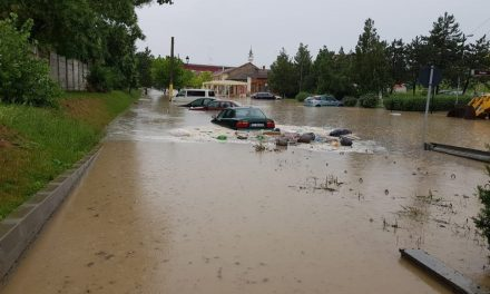 Măsuri luate de PrimăriaCernavodă pentru remedierea pagubelor produse de ploile torențiale