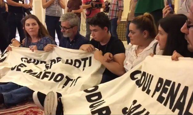 """Protestatar din Parlament, amendat pentru """"Acţiuni ilicite de protest"""" şi """"lozinci de natură a incita la dezordine socială"""""""