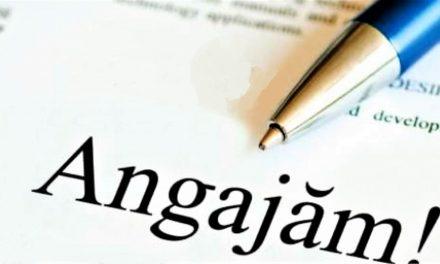 Se fac angajări la stat în județul Constanța. Află care sunt posturile disponibile