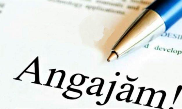 Posturi vacante la Primăria Mangalia, Administraţia Bazinală de Apă Dobrogea Litoral din Constanța, Ceronav