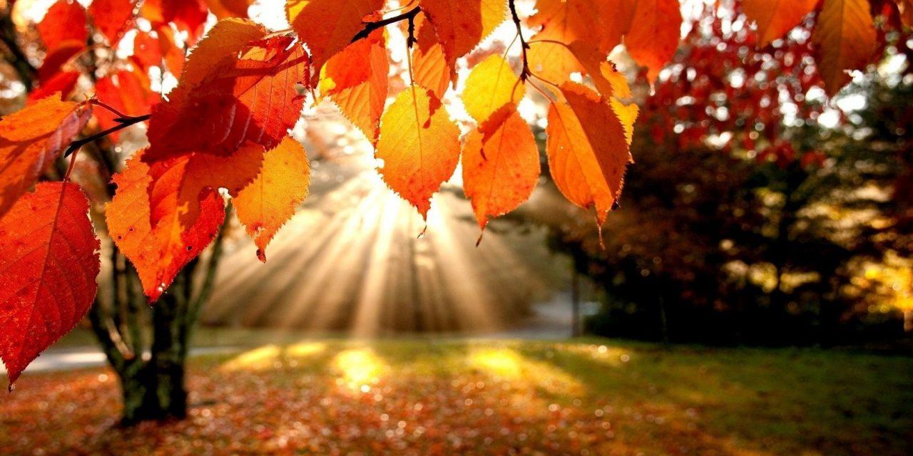 ANM: Vremea călduroasă și secetoasă la Constanța, până în noiembrie
