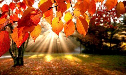1 octombrie vine cu temperaturi de 30 grade la Constanța. Vremea se va răci apoi brusc și vor veni ploile