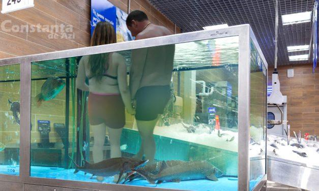 Deprinderi estivale. Turiști surprinși în timp ce urinau în bazinul cu pește proaspăt din Auchan