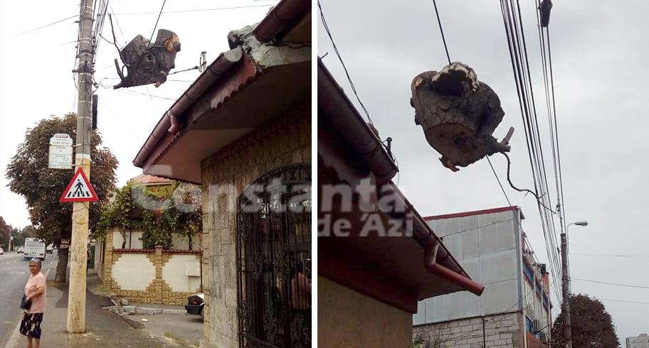 Imagini incredibile în Constanța. Buturugă lăsată să atârne pe un fir de stâlp, deasupra capetelor pietonilor!