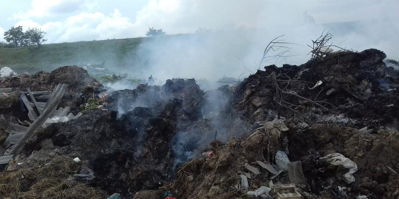 Primăria Lumina – precizări privind incendiul izbucnit în partea de nord a comunei