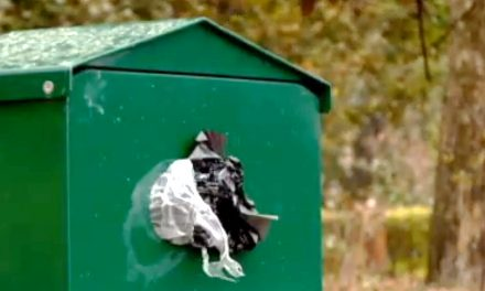 Hoții au furat 20.000 de punguțe din dispozitivele pentru deșeuri canine, montate în parcurile din Constanța