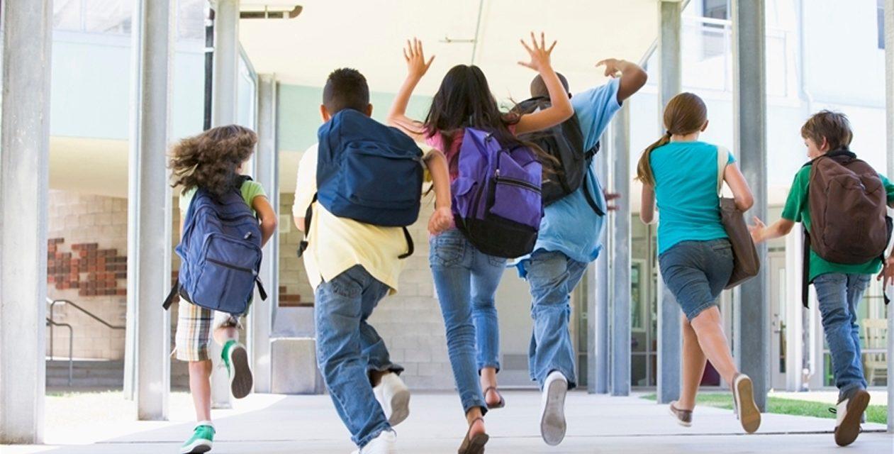 Grădinițele și clasele primare intră în vacanță. Care este structura anului școlar
