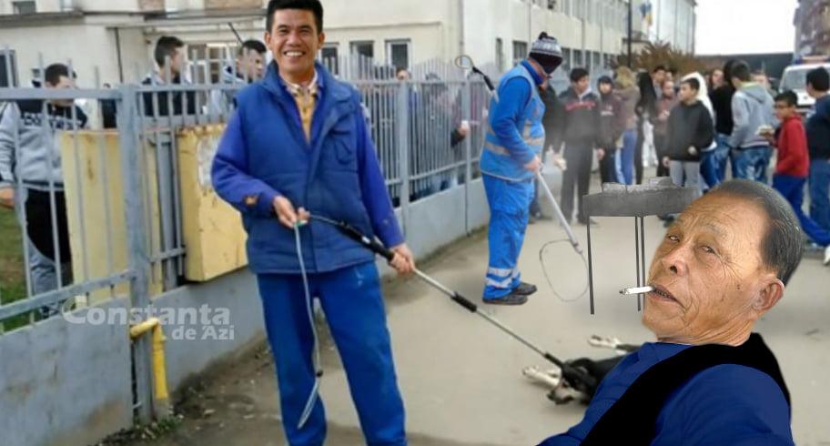 Primăria Constanța a adus hingheri din Filipine. Câinii prinși sunt gătiți la fața locului