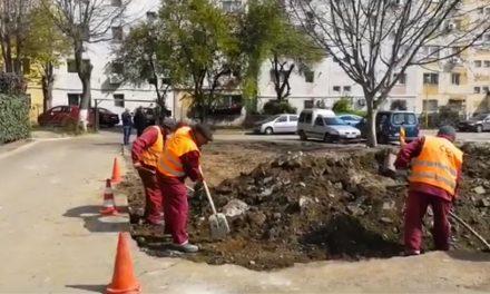 Primăria a început amenajarea de noi parcări în zona Inel II