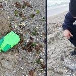 Cum a ajuns o tonă de cocaină pe plajele din Constanța. Fapte parcă desprinse din filmele cu Escobar