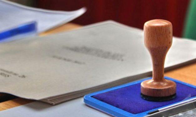Judecătoarea care va supraveghea alegerile în Teleorman, acuzată de legături cu PSD