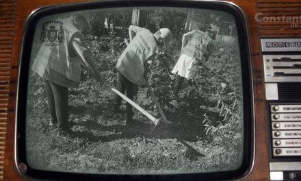Tovarășul Făgădău și cultura record de fân la hectar