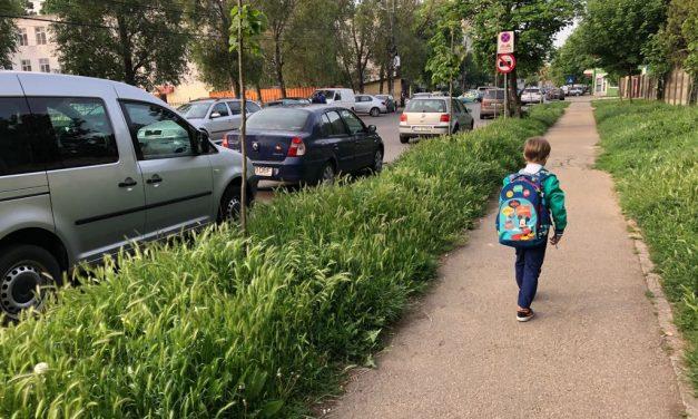 GALERIE FOTO / Domnule primar Făgădău, mi-am pierdut copilul în iarbă…