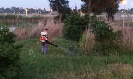 Primăria a început dezinsecția împotriva țânțarilor. În ce zone din oraș se acționează