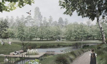 Primăria Cluj face 10 noi parcuri, de 3 ori mai mari decât Parcul Tăbăcărie. La Constanța a dispărut jumătate din parcuri