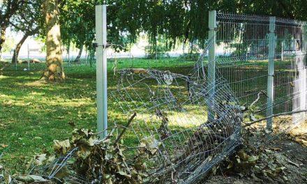 La o săptămână de la inaugurare, țarcurile pentru câini din Parcul Tăbăcărie au fost vandalizate