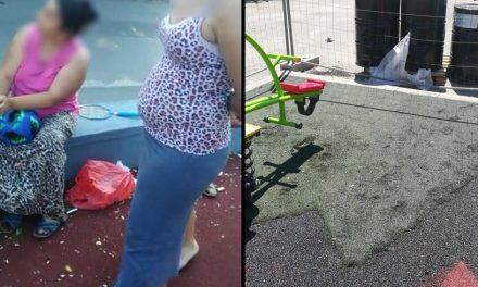 Locuri de joacă vandalizate. Pirandele și-au făcut șezătoare și au spart semințe
