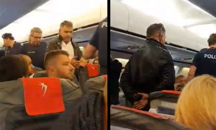 VIDEO. Un avion a aterizat de urgență la Viena după ce un pasager român a bătut o stewardesă
