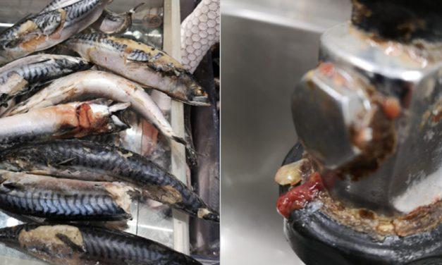 Dezastru în Carrefour: carne expirată, pește stricat, clienți înșelați. ANPC vrea să închidă două hipermarketuri