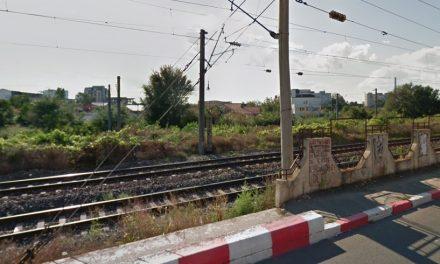 Proiect pentru construirea unei pasarele pietonale între Faleză Sud și Km 4-5, depus de consilierii liberali