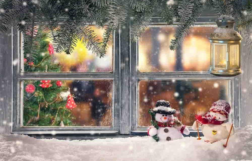 Cum va fi vremea de Crăciun. Meteorologii au emis prognoza pentru următoarele patru săptămâni