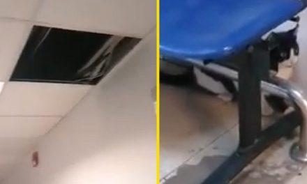 VIDEO. O bucată de tavan şi două pisici au căzut peste un pacient din Spitalul Judeţean Constanţa