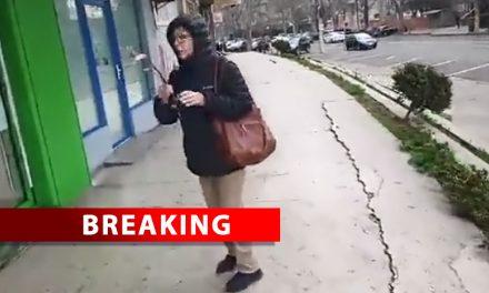 VIDEO ȘOCANT. Infractoare periculoasă, liberă pe străzile Constanței. A rupt magnolia!