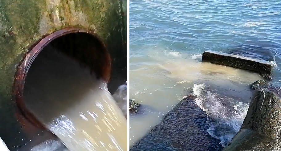 VIDEO. RAJA deversează tone de fecale în mare, chiar lângă Cazino. Garda de Mediu nu a luat nicio măsură