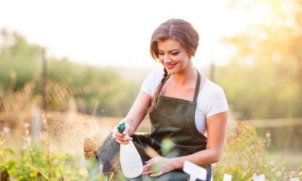 Pasionat de grădinărit? Iată 4 lucruri de care ai nevoie pentru o grădină de vis