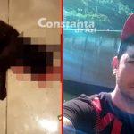 VIDEO. Constănțean acuzat că a omorât cu bestialitate o pisică, pentru a se răzbuna pe fosta iubită