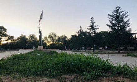 GALERIE FOTO. Cum arată cu adevărat Constanța verde și colorată a primarului Făgădău