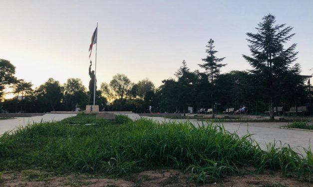 GALERIE FOTO / Cum arată cu adevărat Constanța verde și colorată a primarului Făgădău