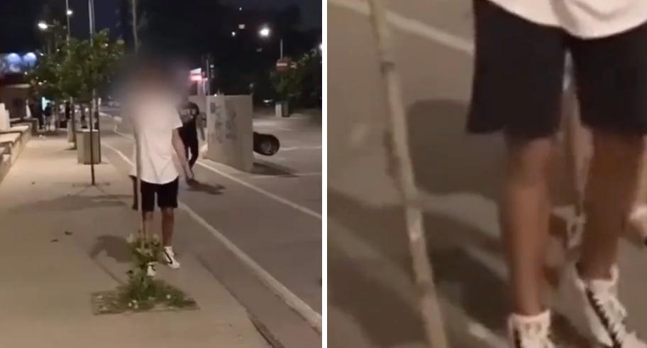 VIDEO. Un tânăr rupe un copăcel din Mamaia și râde în hohote. Primăria va depune plângere la Poliție