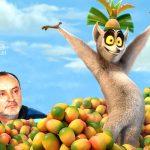 Regele Julien transmite că Strutinsky a ajuns bine și că nu duce lipsă de nimic