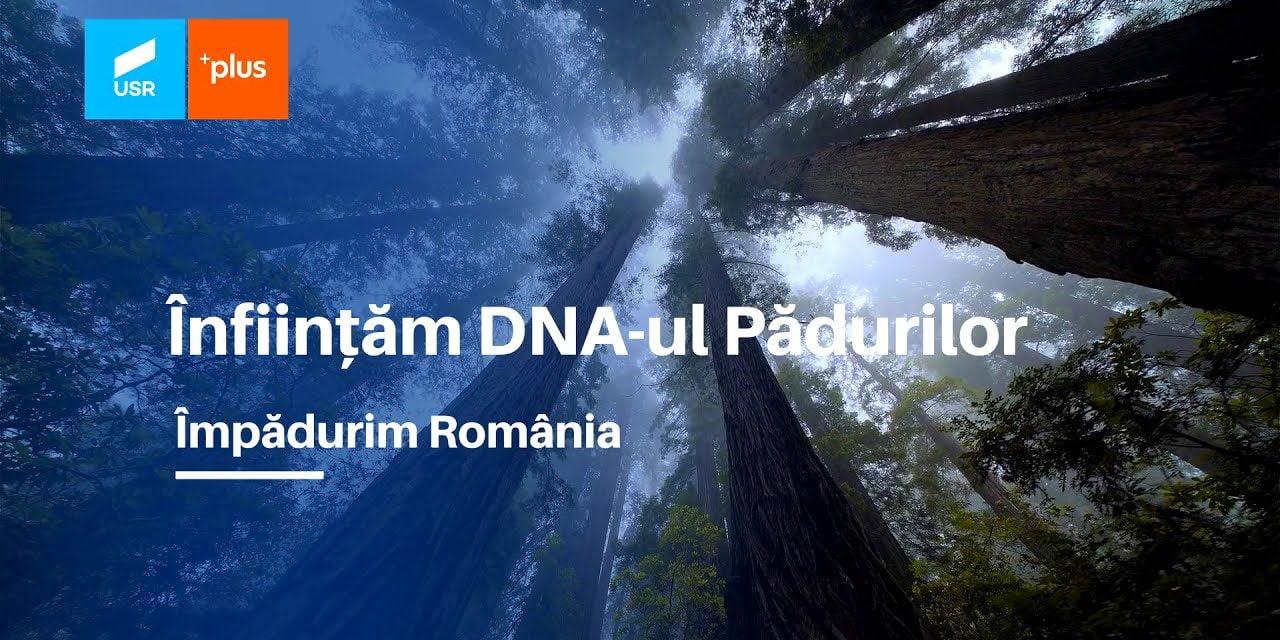 DNA-ul Pădurilor, o prioritate pentru parlamentarii USR PLUS în viitorul mandat