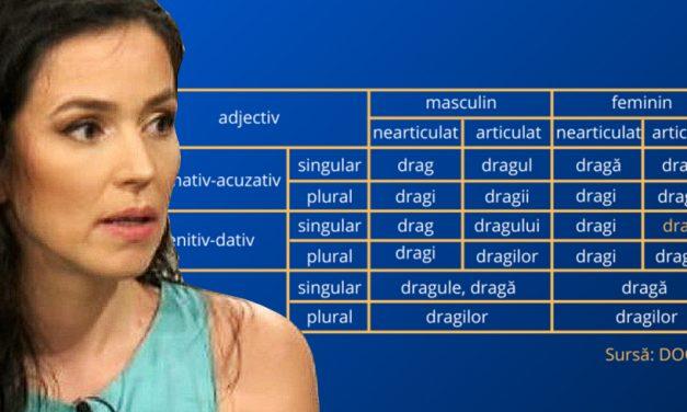 Comisia Europeană în România îi dă peste nas Oliviei Steer după ce l-a criticat pe Mircea Cărtărescu pentru o presupusă greșeală