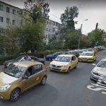 Constanța: Un șarpe a intrat într-un taxi care aștepta clienți în cartierul KM 4-5. Jandarmii nu l-au putut scoate