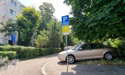 USR-iștii vor să modifice Regulamentul parcărilor. Interval orar pentru plată sau includerea stațiunii Mamaia în zona 2