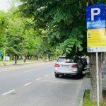 Primăria Constanța angajează parcagii. Se cere experiență în Exel și Power Point