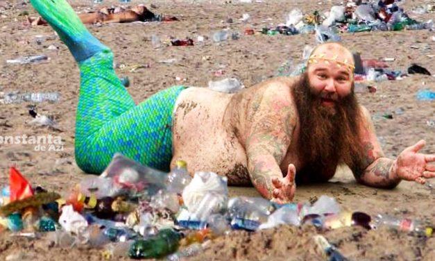 Mai multe sirene-boschetar au ieșit din mare și caută prin gunoaiele de pe plaja din Costinești