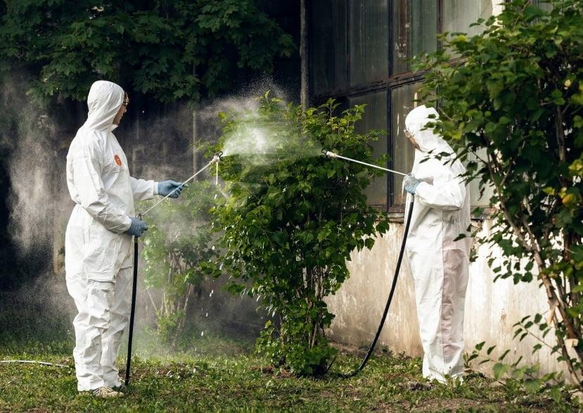 Anunț public: acțiuni de dezinsecție pe raza comunei Nicolae Bălcescu