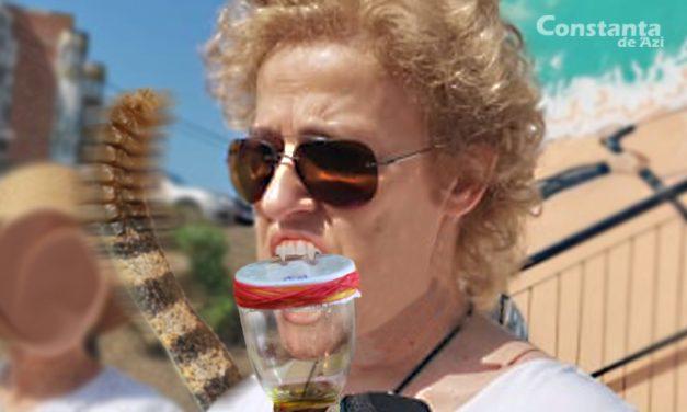 Primăria a semnat un contract cu o fermă de vipere. Felicia Ovanesian produce o găleată de venin pe zi